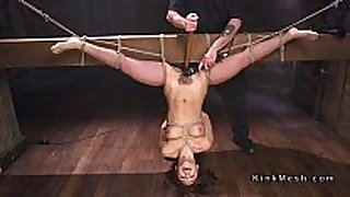 Tied up to wooden beam upside down black brown screwed