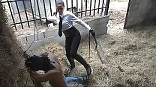 Latin merciless whipping in stables
