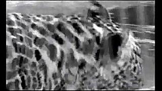 Amandla - brute instinct swedish porn